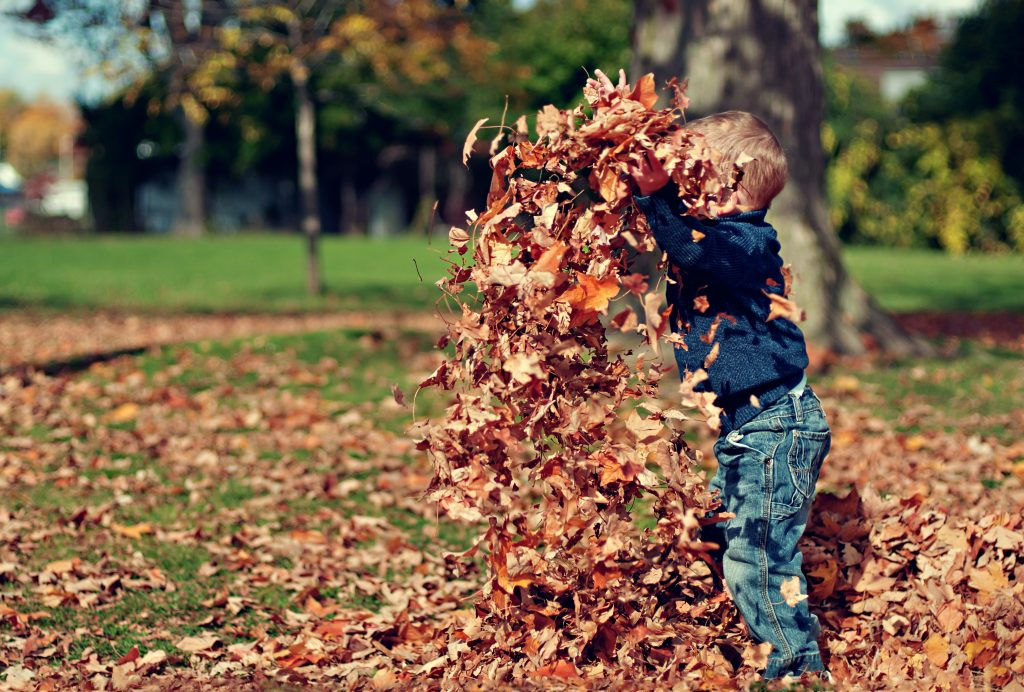 boy with leaves